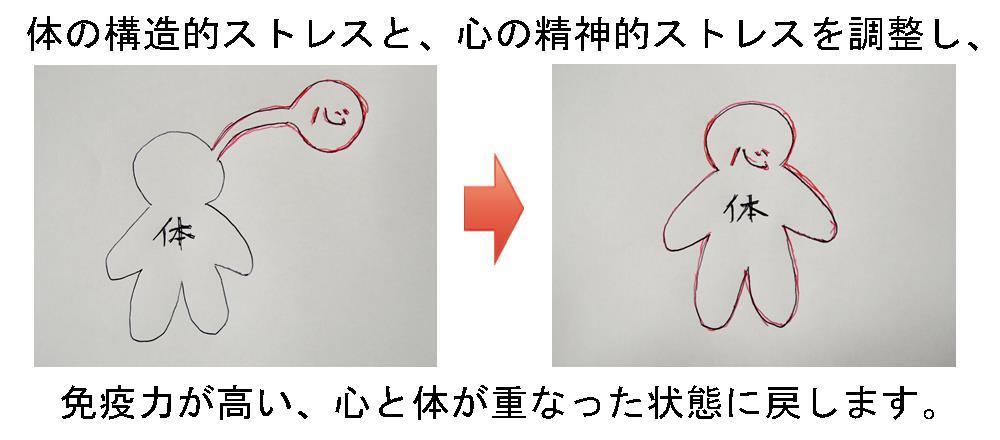 生駒市の自律神経専門整体院「理楽ウェーブ」の心体の画像