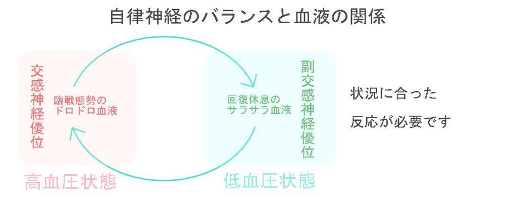 生駒市の自律神経専門整体院「理楽ウェーブ」の自律神経と血液
