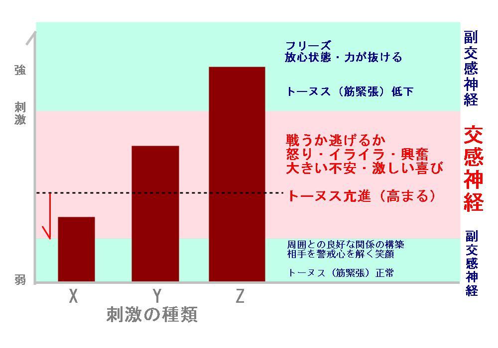 自律神経と高血圧・刺激の関係|生駒市の整体院