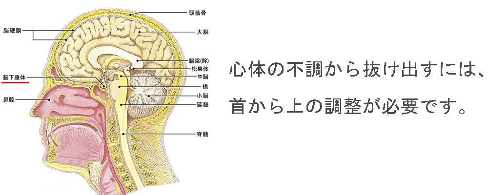 生駒市の自律神経専門整体院「理楽ウェーブ」の心体脳改善画像