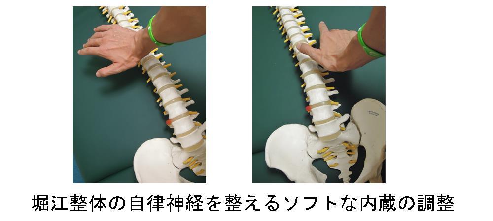 生駒市自律神経専門院理楽ウェーブの内臓を整える調整の画像