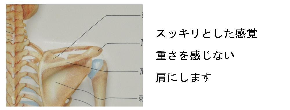生駒市自律神経専門整体院理楽ウェーブが行う肩の状態