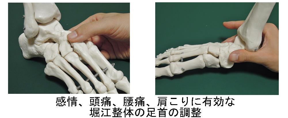 生駒市の自律神経専門整体理楽ウェーブの本格足首調整