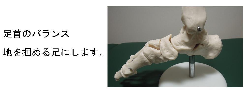 東生駒の自律神経専門の整体院、堀江整体の確かな技術、足首編。