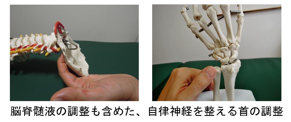 生駒市の自律神経専門整体院「理楽ウェーブ」の首の調整画像