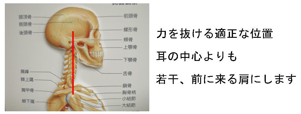 生駒市の自律神経専門整体院の正しい肩の位置の画像