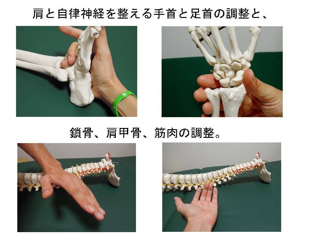 生駒市自律神経専門整体院「理楽ウェーブ」の肩の調整の写真