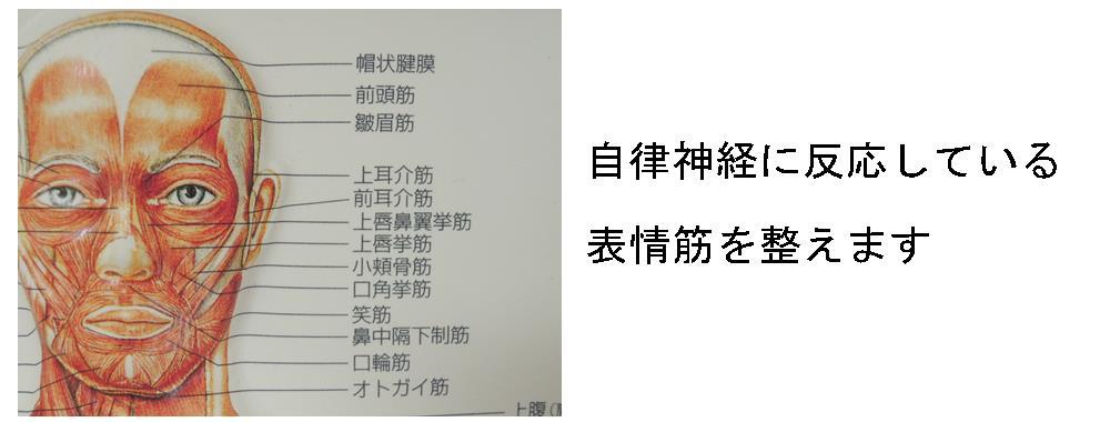 生駒市の自律神経専門整体院「理楽ウェーブ」の表情筋の画像