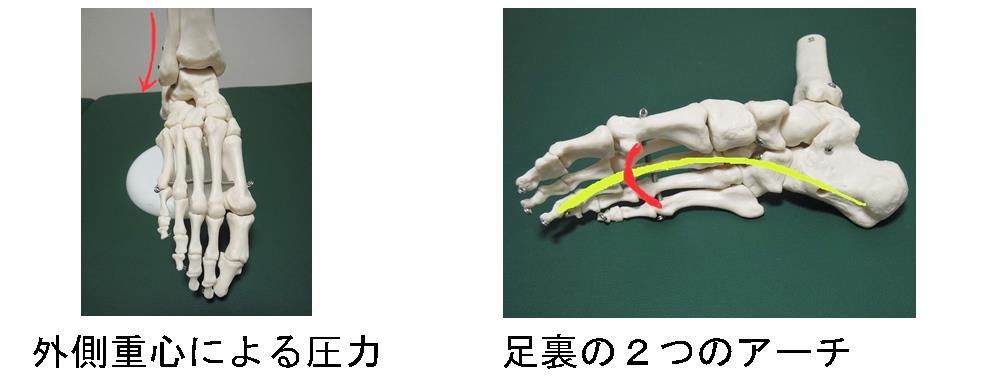 東生駒の自律神経専門の整体院による足首と足裏アーチの関係