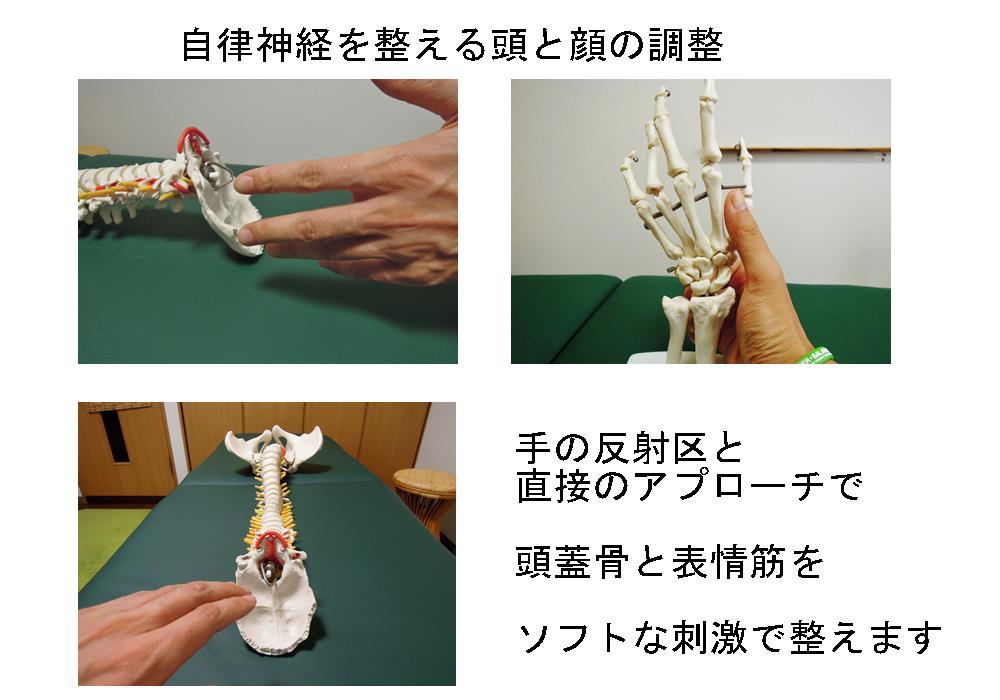 生駒市の自律神経専門整体院「理楽ウェーブ」の頭と顔の調整画像