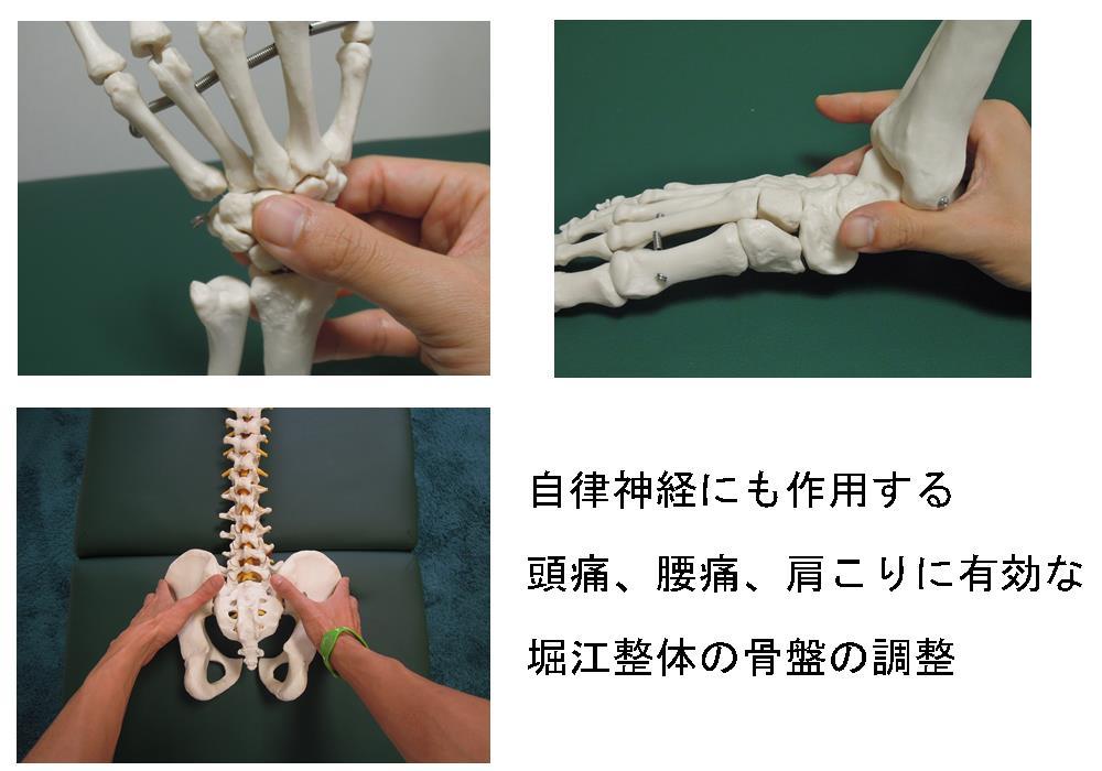東生駒の自律神経専門院「理楽ウェーブ」の骨盤矯正