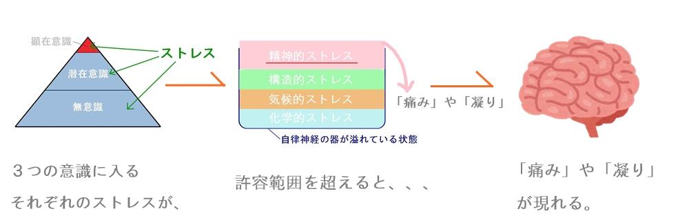 生駒市の自律神経専門整体院の「痛みや凝り」1