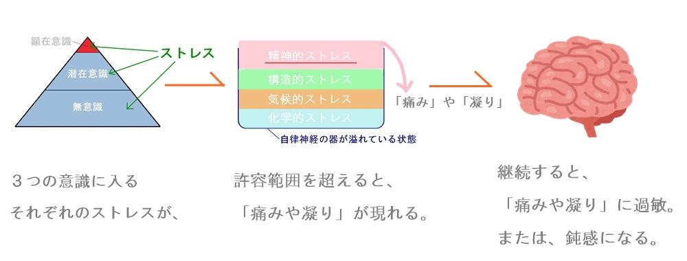 生駒市の自律神経専門整体院の「痛みや凝り」2