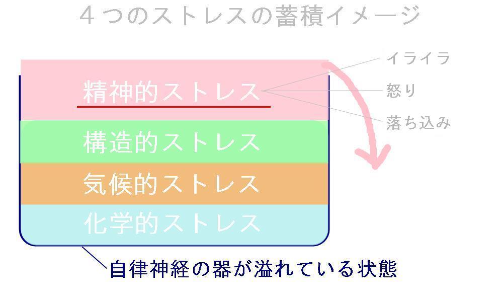 生駒市の自律神経専門整体院の「怒り感情」