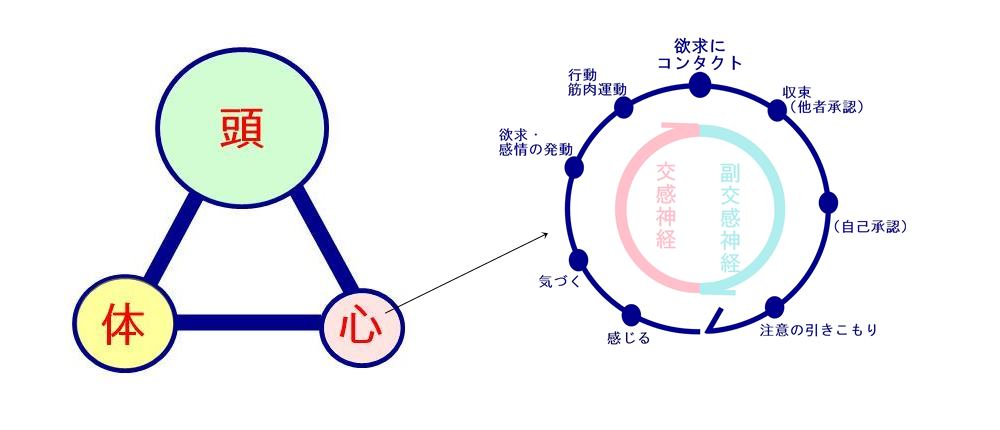 エネルギーを回す|生駒市の自律神経専門整体院