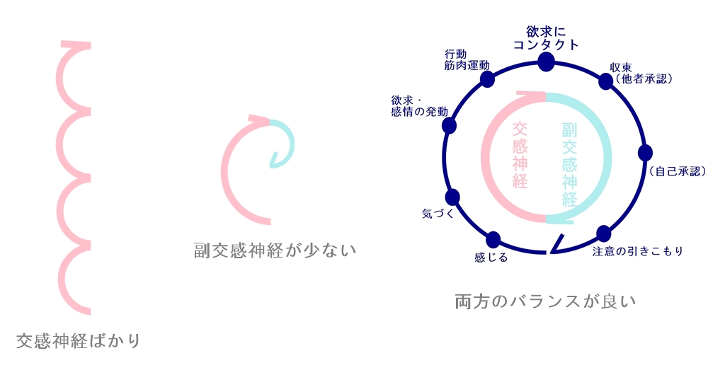 自律神経とエネルギーサークル2|生駒市の自律神経専門整体院
